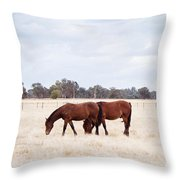 Over The Fence Throw Pillow