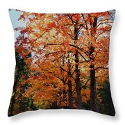 Over The Hill And Through The Trees Throw Pillow
