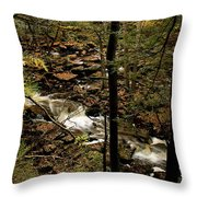 Over The River And Thru The Wood Throw Pillow
