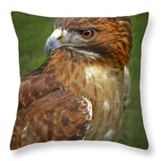 Over The Shoulder  Throw Pillow