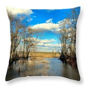 Over The Waters Throw Pillow