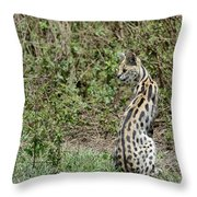 Over Theshoulder Throw Pillow