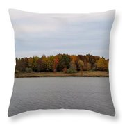 Over View Of Some Fall Colors For The Lake Throw Pillow