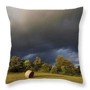 Overcast - Before Rain Throw Pillow