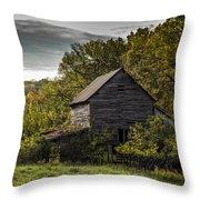 Overgrown Throw Pillow by Amber Kresge