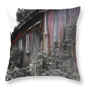 Overgrown Shed B/w Throw Pillow