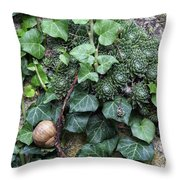 Overgrown Wall With Snail Throw Pillow
