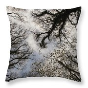 Overhead Trees In Exmoor, United Kingdom Throw Pillow