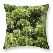 Overhead View Throw Pillow