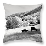 Overlooked Throw Pillow