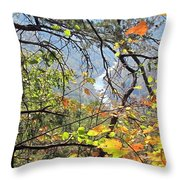 Overlooking The Gorge Throw Pillow