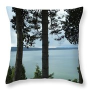 Overlooking The Ocean Throw Pillow
