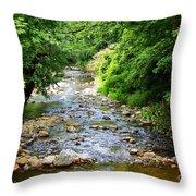 Owens Creek Throw Pillow