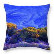 Owens Valley Fall Colors  Throw Pillow