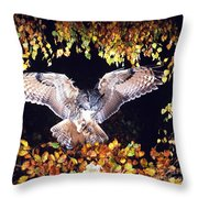 Owl About To Land Throw Pillow by Manfred Danegger