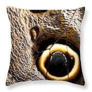 Owl Butterfly Wing Throw Pillow