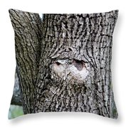 Owl Face Throw Pillow