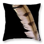 Owl Feather Throw Pillow