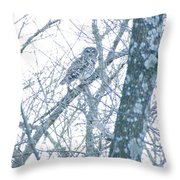 Owl II Throw Pillow