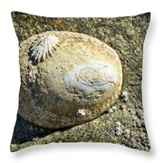 Owl Limpet Throw Pillow