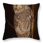 owl of Madagascar Throw Pillow
