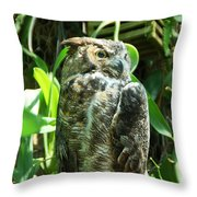 Owl Portrait 2 Throw Pillow