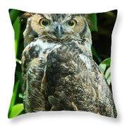 Owl Portrait Throw Pillow
