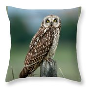 Owl See You Throw Pillow