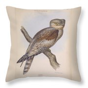 Owl Steanorninae Throw Pillow
