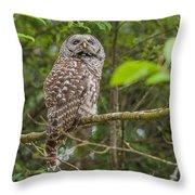 Up - Owl Throw Pillow