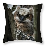Owlet On The Watch Throw Pillow