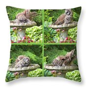 Owls Do Take Baths Throw Pillow