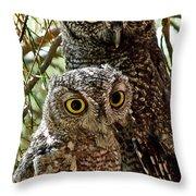 Owls From Amado Arizona Throw Pillow