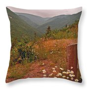 Ox-eye Daisies On Skyline Trail In Cape Breton Highlands Np-ns Throw Pillow