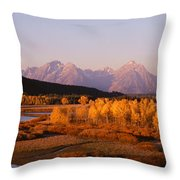 Oxbow Bend Grand Teton National Park Wy Throw Pillow