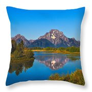 Oxbow Bend II Throw Pillow