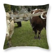 Oxen Throw Pillow