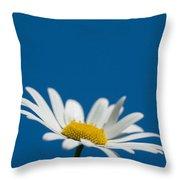 Oxeye Throw Pillow