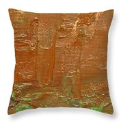 Oxide I Throw Pillow