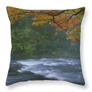 Oxtongue River Provincial Park, Dwight Throw Pillow