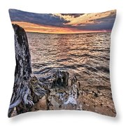 Oyster Bay Stump Sunset Throw Pillow