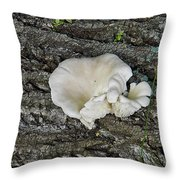 Oyster Mushroom Throw Pillow