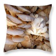 Oyster Mushrooms Throw Pillow