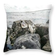 Oysters On The Rocks Throw Pillow