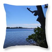 Ozello Tree And Glittering Water Throw Pillow