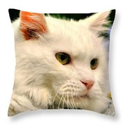 P C - Perfect Cat Throw Pillow