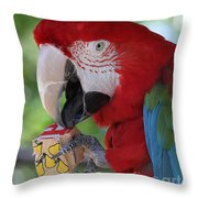 P Is For Parrot Throw Pillow
