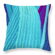 P4240195 - Eye Lens Fiber  Throw Pillow