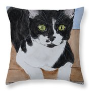 Pablo The Cat Throw Pillow