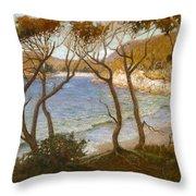 Pacific Beaches Throw Pillow